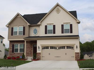 Fredericksburg Single Family Home For Sale: 4 Piney Glade Road