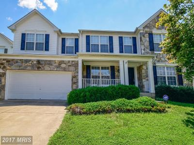Fredericksburg Single Family Home For Sale: 5316 Joshua Tree Circle