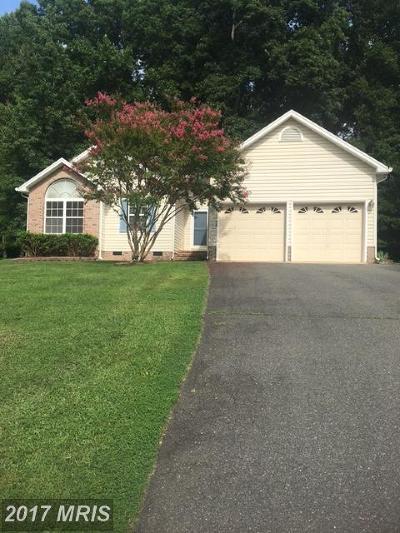 Fredericksburg Single Family Home For Sale: 11108 Ascot Circle