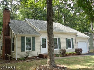 Fredericksburg Single Family Home For Sale: 79 Lovette Drive