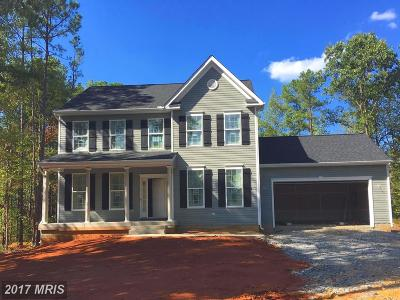 Single Family Home For Sale: 2417 Horseshoe Bend Drive