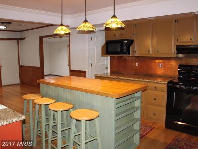Fredericksburg Rental For Rent: 816 Galway Lane