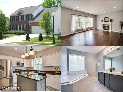 Fredericksburg Single Family Home For Sale: 12004 Majestic Court