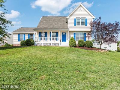 Fredericksburg Single Family Home For Sale: 4403 Battery Hill Lane