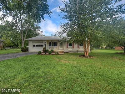 Fredericksburg Single Family Home For Sale: 824 Salem Drive
