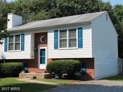 Locust Grove Single Family Home For Sale: 11806 Ashwood Court