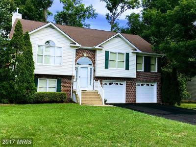 Fredericksburg Single Family Home For Sale: 4211 Oakhill Road