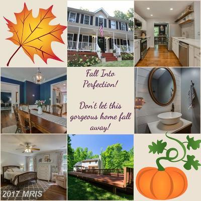 Spotsylvania Single Family Home For Sale: 7925 Lake Anna Parkway