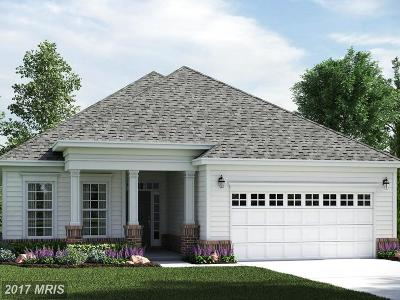 Fredericksburg Single Family Home For Sale: 9813 Balls Bluff Road