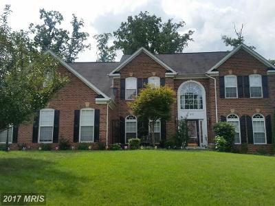 Fredericksburg Single Family Home For Sale: 11311 Long Branch Way