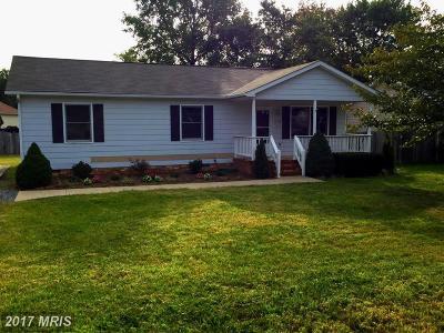 Fredericksburg Single Family Home For Sale: 11215 Trisler Drive