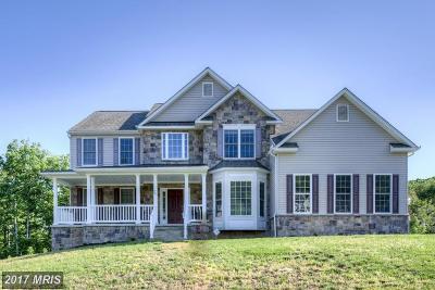 Fredericksburg Single Family Home For Sale: 40 Noel Drive