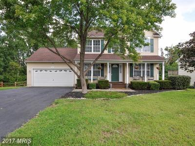 Fredericksburg Single Family Home For Sale