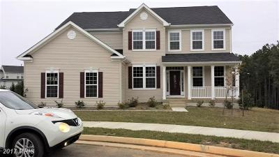 Fredericksburg Single Family Home For Sale: 5501 Spring Bluff Court
