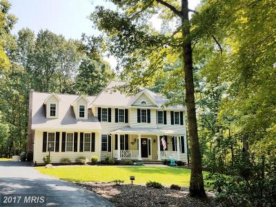 Fredericksburg Single Family Home For Sale: 13601 South General Slocum Court