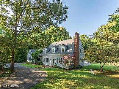 Fredericksburg Single Family Home For Sale: 4 Old Cobblestone Court