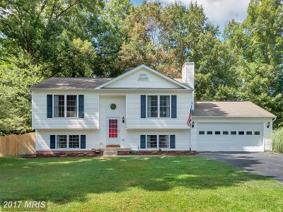 Fredericksburg VA Single Family Home For Sale: $239,000