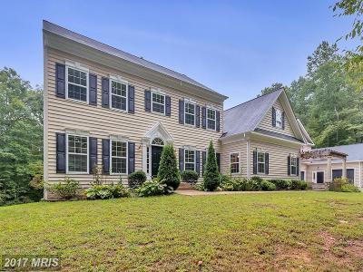 Spotsylvania Single Family Home For Sale: 8001 Lake Anna Parkway