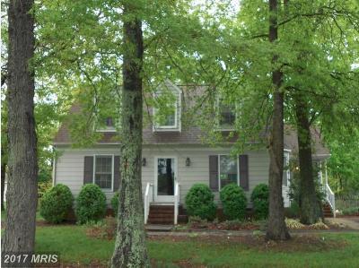 Fredericksburg Single Family Home For Sale: 10819 Ann Davis Drive