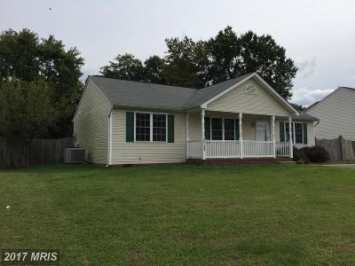 Fredericksburg Single Family Home For Sale: 10703 Hamiltons Crossing Drive