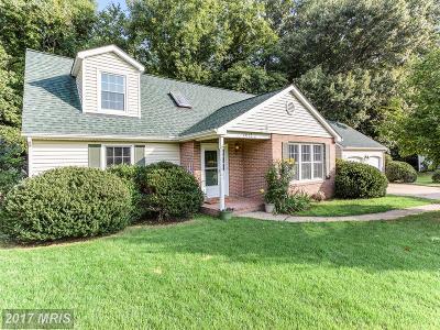 Fredericksburg Single Family Home For Sale: 2013 White Lake Drive