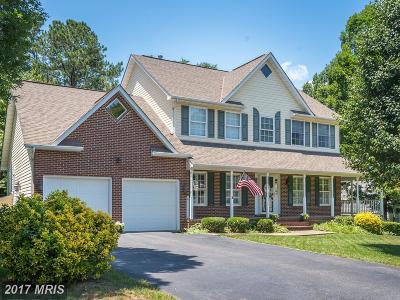 Fredericksburg Single Family Home For Sale: 6302 Prospect Street