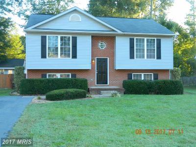 Fredericksburg Single Family Home For Sale: 10111 Ballston Road