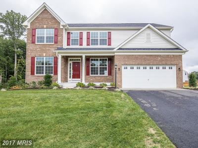 Fredericksburg Single Family Home For Sale: 11317 Baron Drive