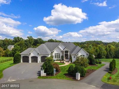 Spotsylvania Single Family Home For Sale: 11901 Boulder Court
