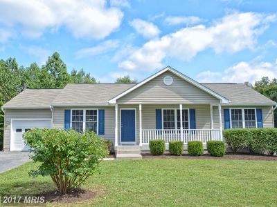 Fredericksburg Single Family Home For Sale: 11111 Huntington Meadows Lane
