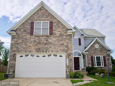 Spotsylvania Single Family Home For Sale: 6110 Copper Mountain Drive