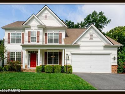 Fredericksburg VA Single Family Home For Sale: $458,000