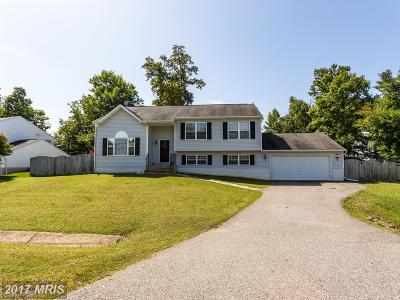 Fredericksburg Single Family Home For Sale: 8712 Forest Glen Circle