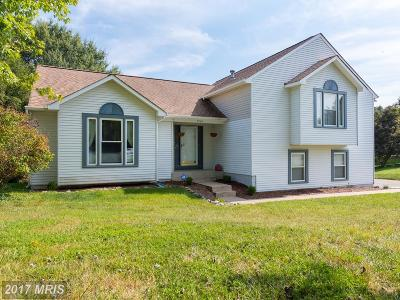 Fredericksburg Single Family Home For Sale: 7726 Stockwell Drive