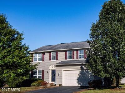 Fredericksburg Single Family Home For Sale: 6807 S Dewey Court