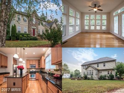 Fredericksburg Single Family Home For Sale: 3809 Chapman Drive