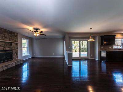 Fredericksburg Single Family Home For Sale: 11702 Spyglass Road