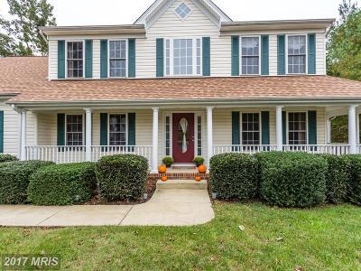Fredericksburg Single Family Home For Sale: 6226 Prospect Street