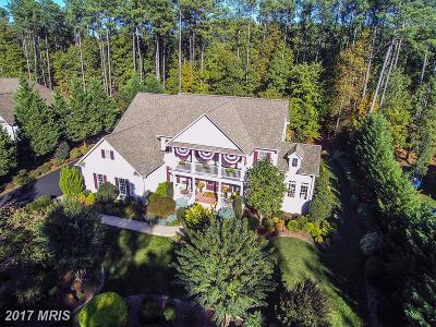 Spotsylvania Single Family Home For Sale: 10519 Wildbrooke Court