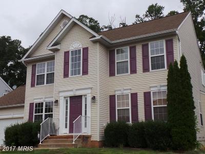 Fredericksburg Single Family Home For Sale: 6827 Buck Lane
