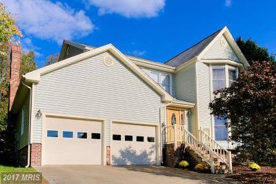 Fredericksburg Single Family Home For Sale: 6711 Farmstead Lane