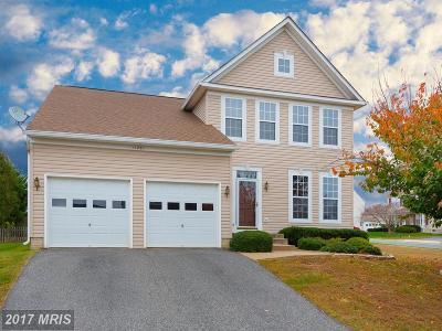 Fredericksburg Single Family Home For Sale: 11201 Hollins Court