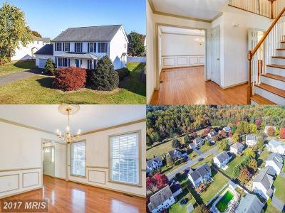 Fredericksburg Single Family Home For Sale: 5511 Heritage Hills Circle
