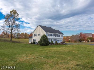 Spotsylvania Single Family Home For Sale: 8409 W Hildy Court