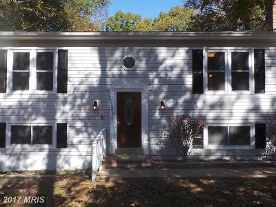 Spotsylvania Single Family Home For Sale: 11503 Wilderness Park Drive