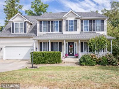Fredericksburg Single Family Home For Sale: 11809 Harris Mill Court