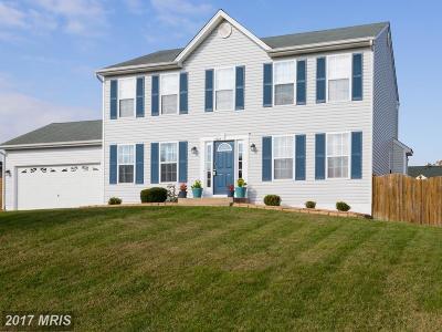 Fredericksburg Single Family Home For Sale: 5929 Glen Eagles Drive