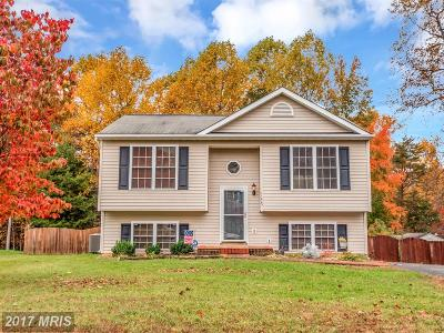 Fredericksburg Single Family Home For Sale: 11403 Woodland View Drive