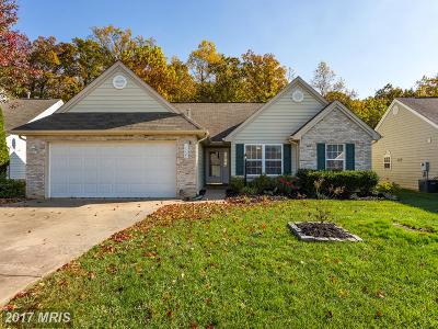 Fredericksburg Single Family Home For Sale: 11721 Collinwood Court