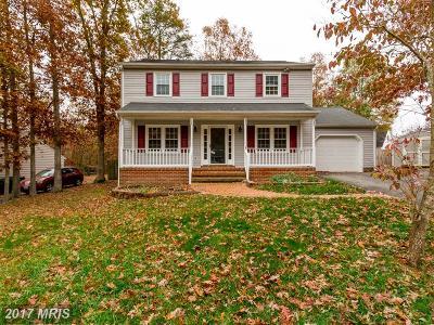 Fredericksburg Single Family Home For Sale: 843 Stonewall Lane